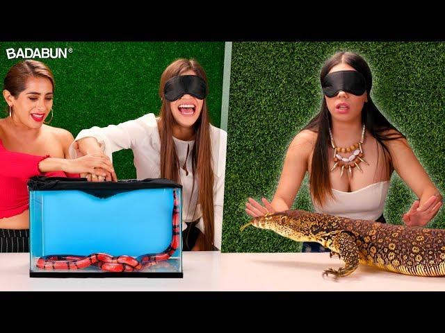 ¿Qué hay en la caja? | Nivel leyenda con YouTubers