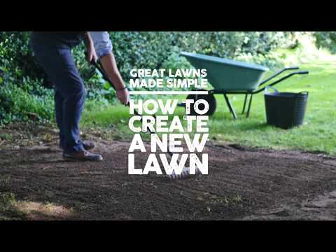 How to Create a New Lawn