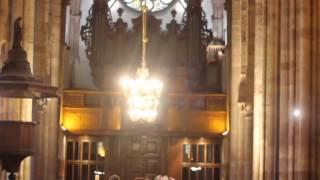Video L'église Saint-Thomas de Strasbourg, par Jean Arbogast download MP3, 3GP, MP4, WEBM, AVI, FLV Agustus 2018