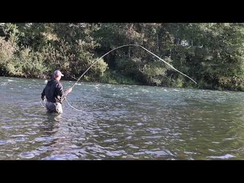 Watershed Fly Shop: Trout Fishing The Willamette Valley