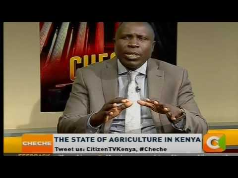 [ part two]   Cheche  : The State of Agriculture in Kenya