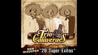 Trio Calaveras - Flor Silvestre