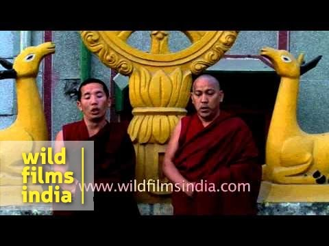 Tibetan monks throat-singing - Specialized form of chanting