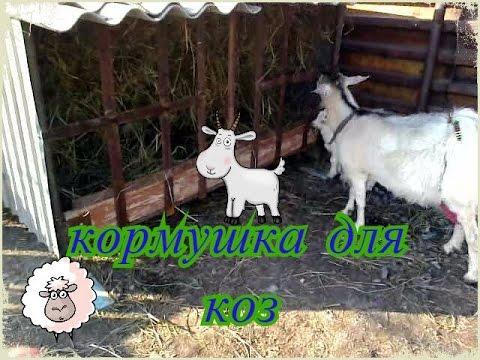 кормушка для коз.