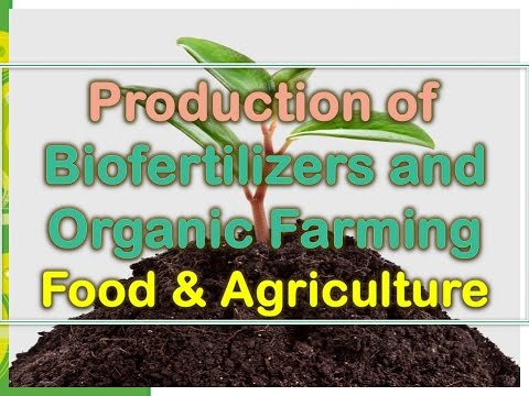 Production of Biofertilizers and Organic Farming - Food and Agriculture