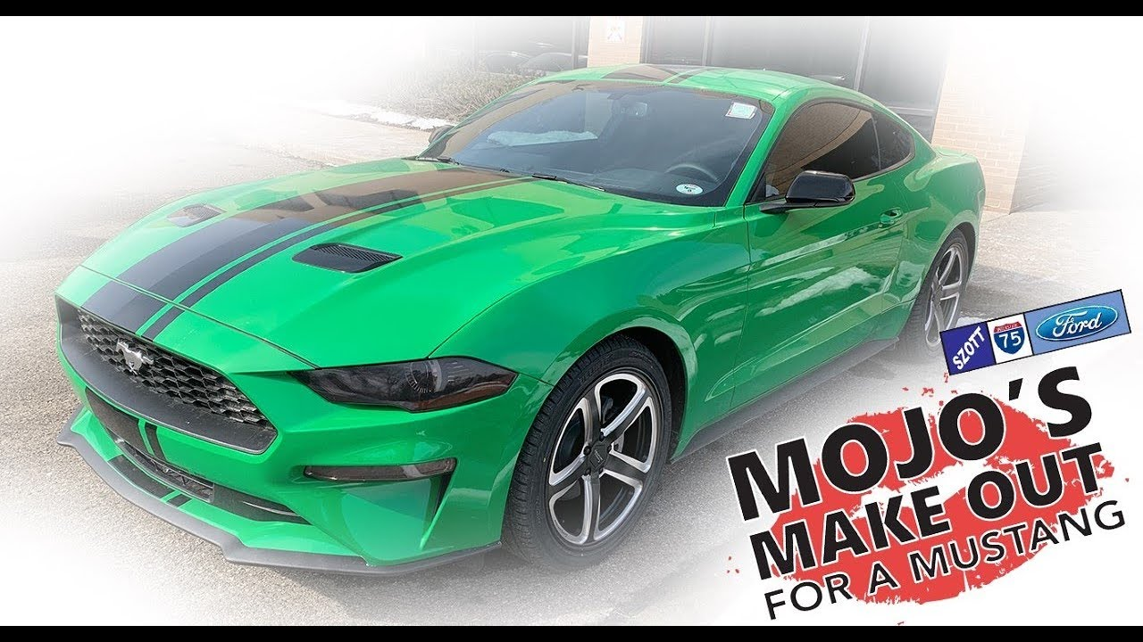 Mojo S Make Out With A Mustang 2018