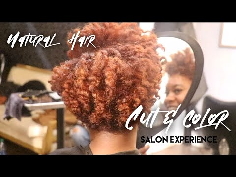 Natural Hair SALON EXPERIENCE! | Hair Cut + Color!!
