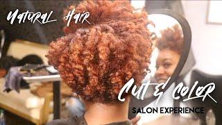 Baixar Natural Hair SALON EXPERIENCE! | Hair Cut + Color!!