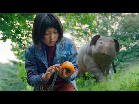 Download Okja (2017) Movie Explained in Hindi
