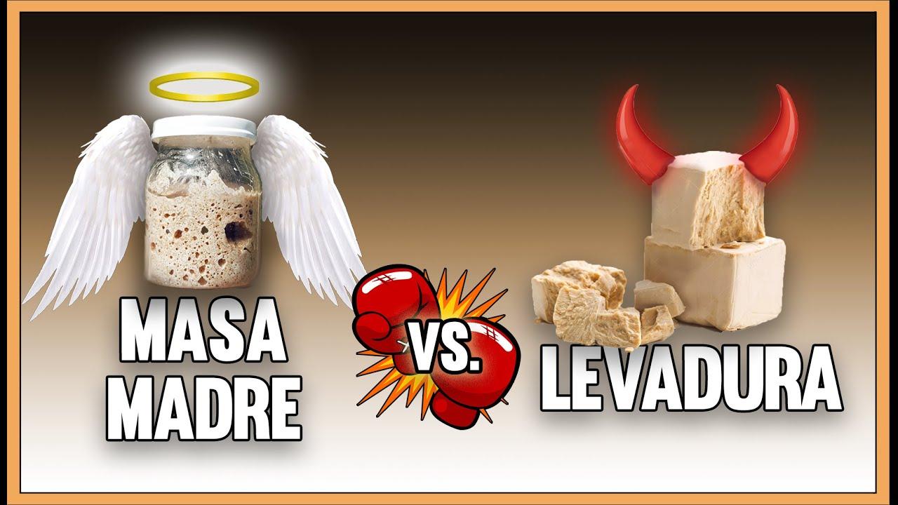 MASA MADRE VS LEVADURA