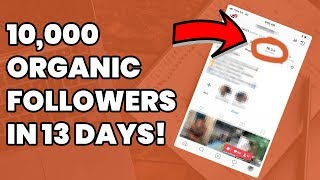 How I Got 10,000 Instagram Followers In 13 Days! (Secret Sauce)