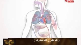 بالفيديو.. جمال شعبان يشرح معجزة الله فى حماية أعضاء جسم الإنسان