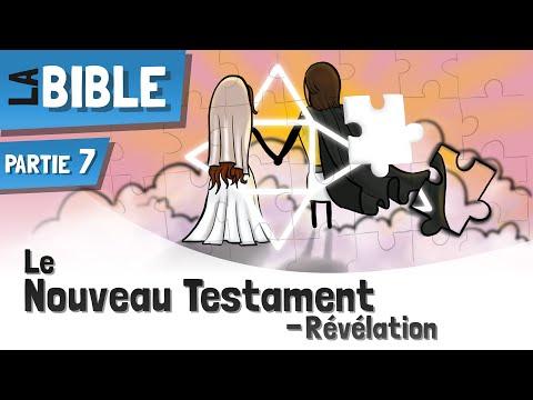 Le Nouveau Testament | Un Bref Aperçu - EP7