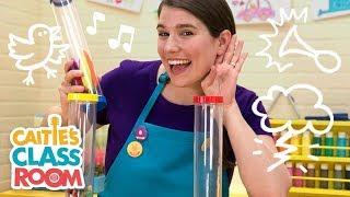 Caitie's Classroom Live - Listen! Listen! What's that Sound!