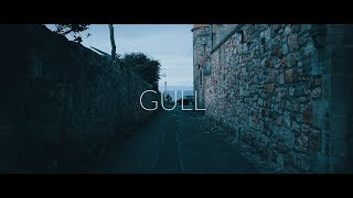 Gull | GH5 (Sigma 18-35mm + Canon 100mm Macro)