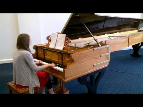 Jessica's Theme (Man from Snowy River) on World's Longest Piano
