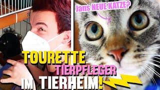 Tourette arbeiten als Tierpfleger im Tierheim.. Jans Neue Katze Serengeti?