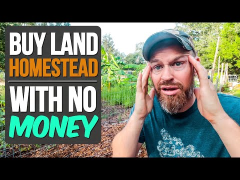 How to Buy Land, Get Out of the City & Homestead (with NO MONEY)