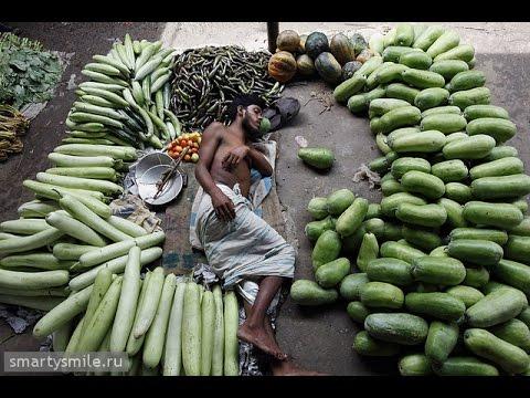 flower business in bangladesh