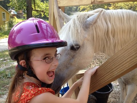 How animals are therapeutic for special needs kids!