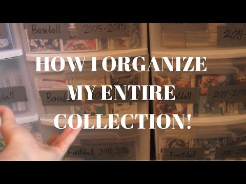 How I Organize my LARGE Sports Card Collection!