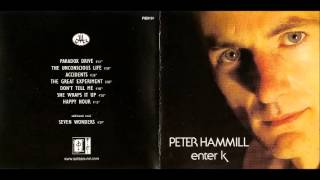 Watch Peter Hammill The Unconscious Life video