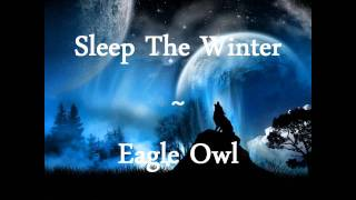 Sleep The Winter - Eagle Owl