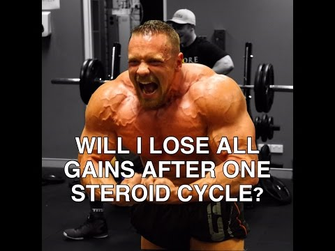 Will I Lose All Gains After One Steroid Cycle?
