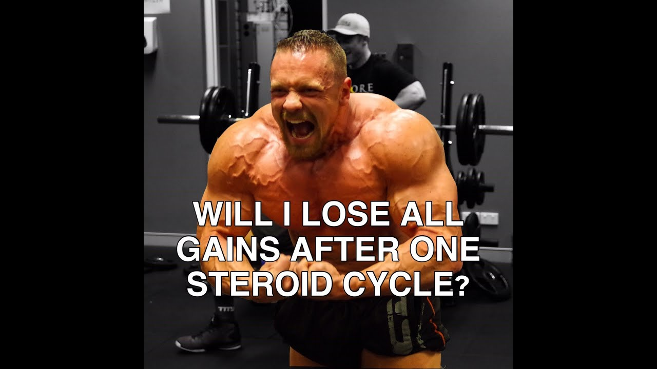 Will I Lose All Gains After One Cycle? | Tiger Fitness