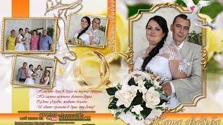 Наша Свадьба Светлана и Сергей,29 августа 2015г.