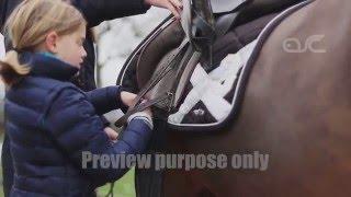 Manège Horse's Dream à Wegnez