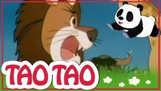 Tao Tao - 22 - הברווזון המכוער