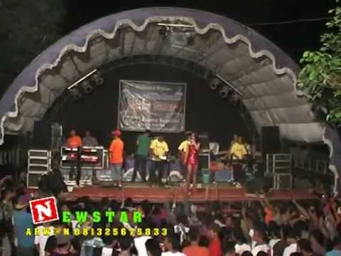 Tanpa Alasan Edot Parabola New Star Music Dangdut Jepara