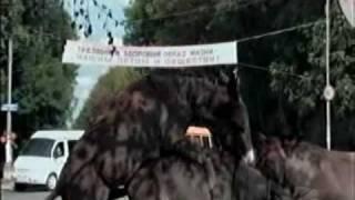 Uroki Ruskogo  (Уроки русского)  1