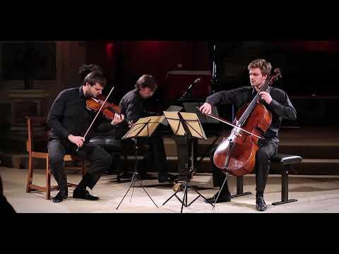 Smetana Trio In G Minor, 1st Mvt