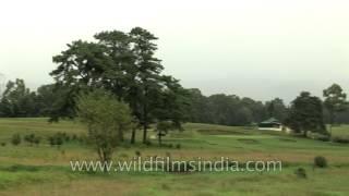 Shillong Golf Course - Glen Eagle of the East