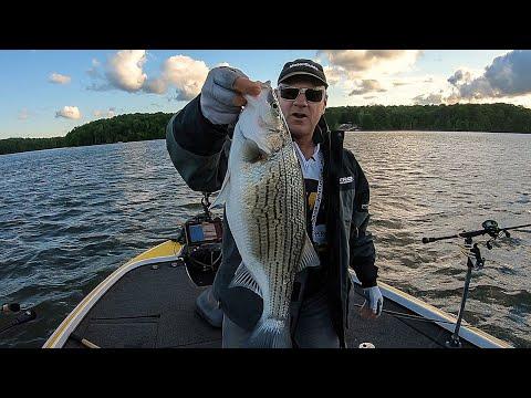 FOX Sports Outdoors SouthEAST #9 - 2019 Oconee Georgia Hybrid Striper Fishing