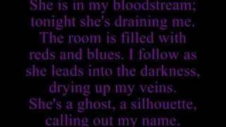 Hawthorne Heights - Dead in the Water lyrics