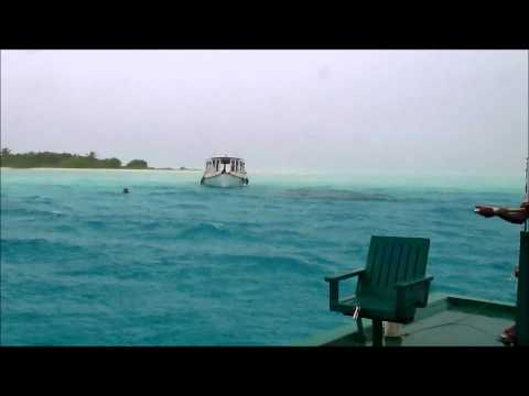 Bodumohoraa (Vaavu Atoll) - picnic island
