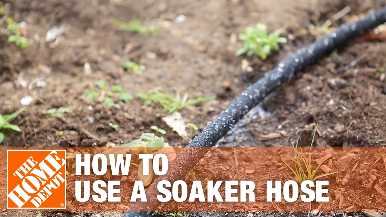 Why Should You Use A Soaker Hose The
