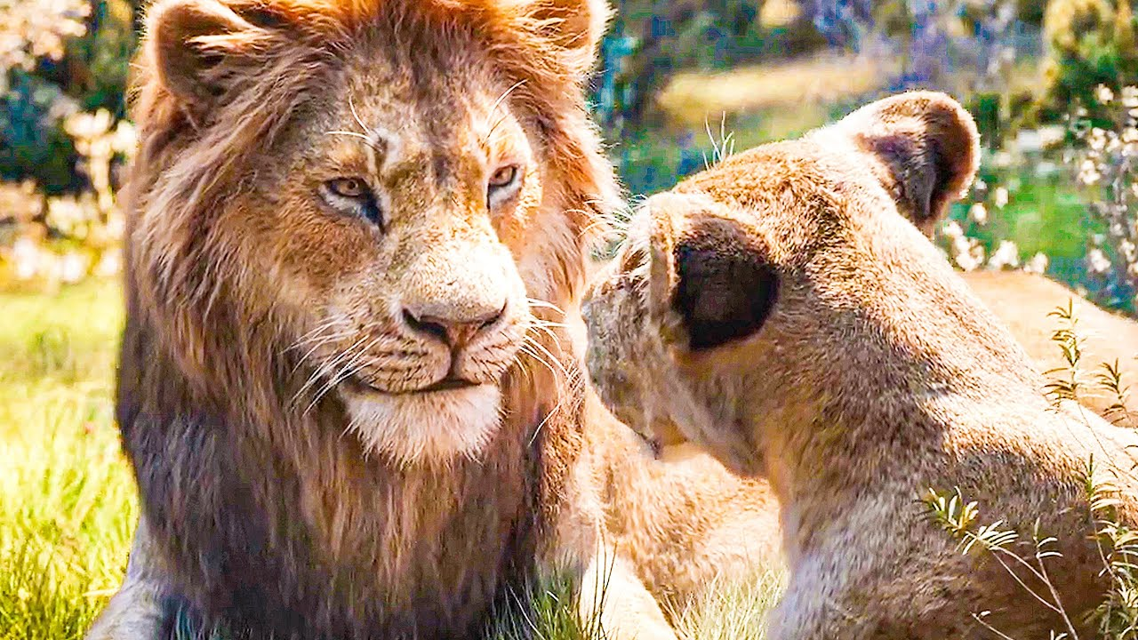 Can You Feel The Love Tonight Song Scene The Lion King 2019 Movie Clip