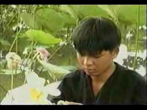 Phi Nhung - Giac Ngu Dau Noi