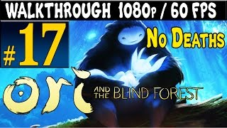 ORI And The Blind Forest Walkthrough - Part 17 Mount Horu Gameplay 1080p 60FPS PC / Xbox One