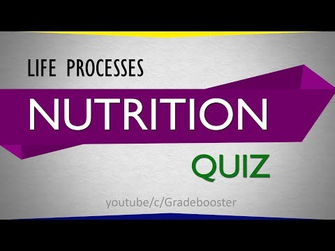 Quiz on Nutrition : Life Processes : CBSE Syllabus : Class 10th Biology : NCERT X Science