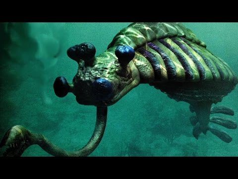 Top 7 INSANE Ancient Creatures - Discoveries of a Rare Unknown New Species
