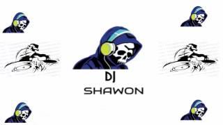 yo yo  Honey Singh remix song 2016 DJ SHAWON