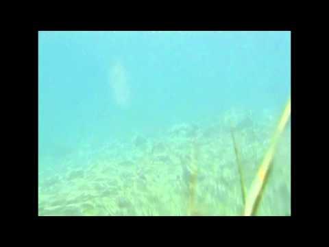 Yukon Fly Fishing (Arctic Grayling)