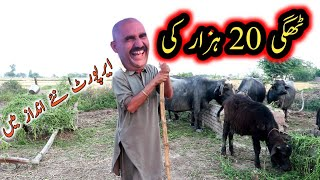 Thagi 20 Hazar Di    Full Comedy with Airport & Hola Jutt   chacha pakistani official