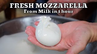 HOW TO MAKE FRËSH MOZZARELLA REAL FROM SCRATCH | At Home Very Easy