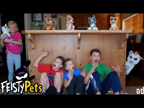 Ninja Night SPOOKY Fun With Feisty Pets!